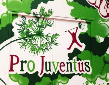 Pro Juventus, HKZ Implementatie